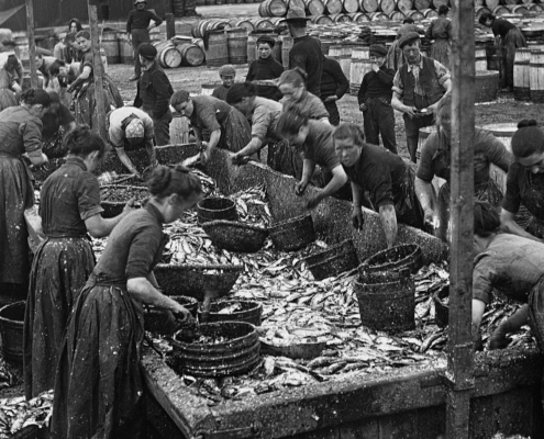 Black and White photograph of Herring lassies